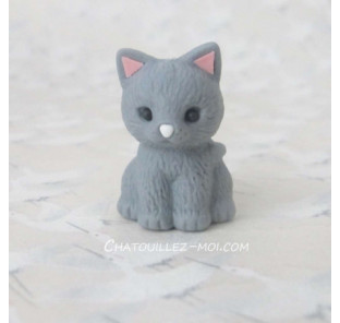 Gomme chat gris